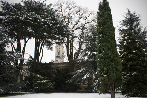 Trent Building through the trees